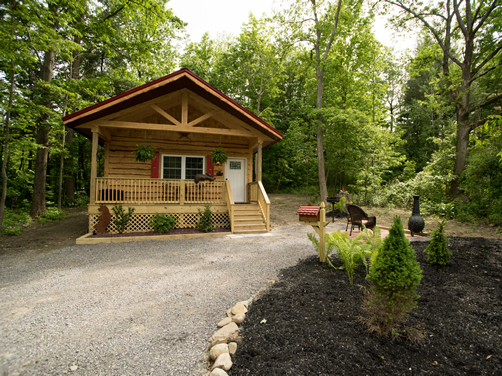 Cabin Rental Western New York